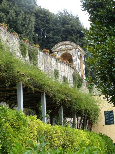 Associazione Giardino Mediterraneo Eventi