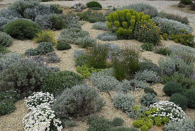 Associazione giardino mediterraneo pacciamatura e composto - Giardino mediterraneo ...